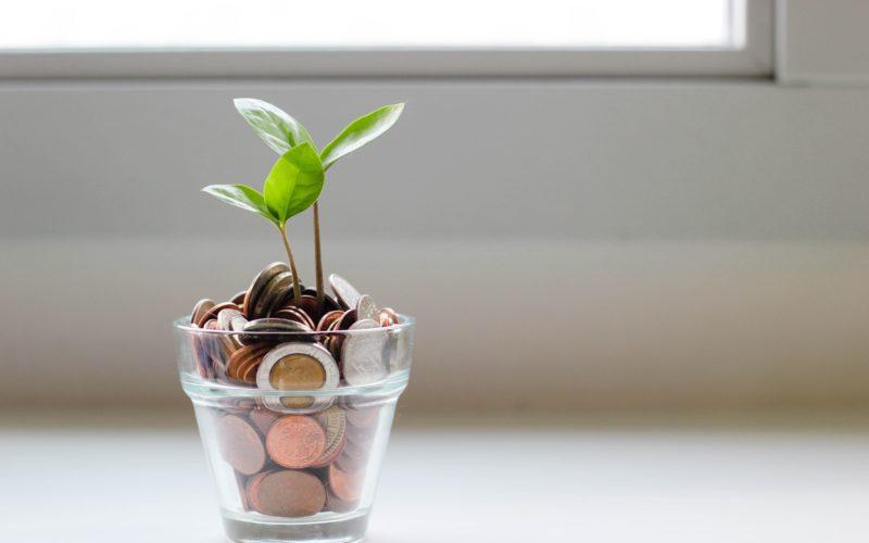 ¿Cómo manejar mejor tus finanzas?
